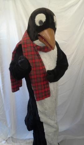 penguin-rental.jpg