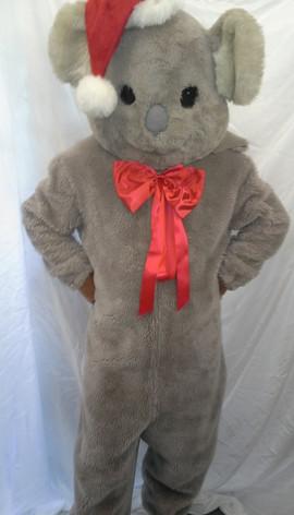 christmas-koala-rental.jpg