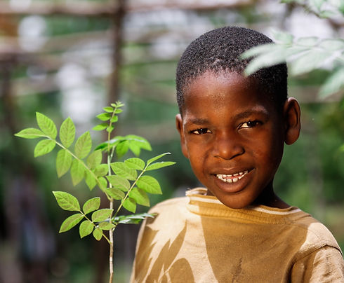 boy-with-tree.jpg