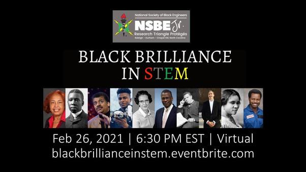 Black Brilliance in STEM