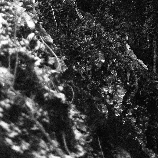 35mm shoot077j.jpg