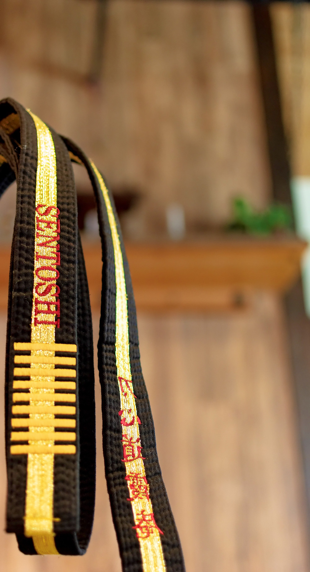 Master Mark Sentoshi Russo's 9th Degree Black Belt - The only one of it's kind in To-Shin Do.