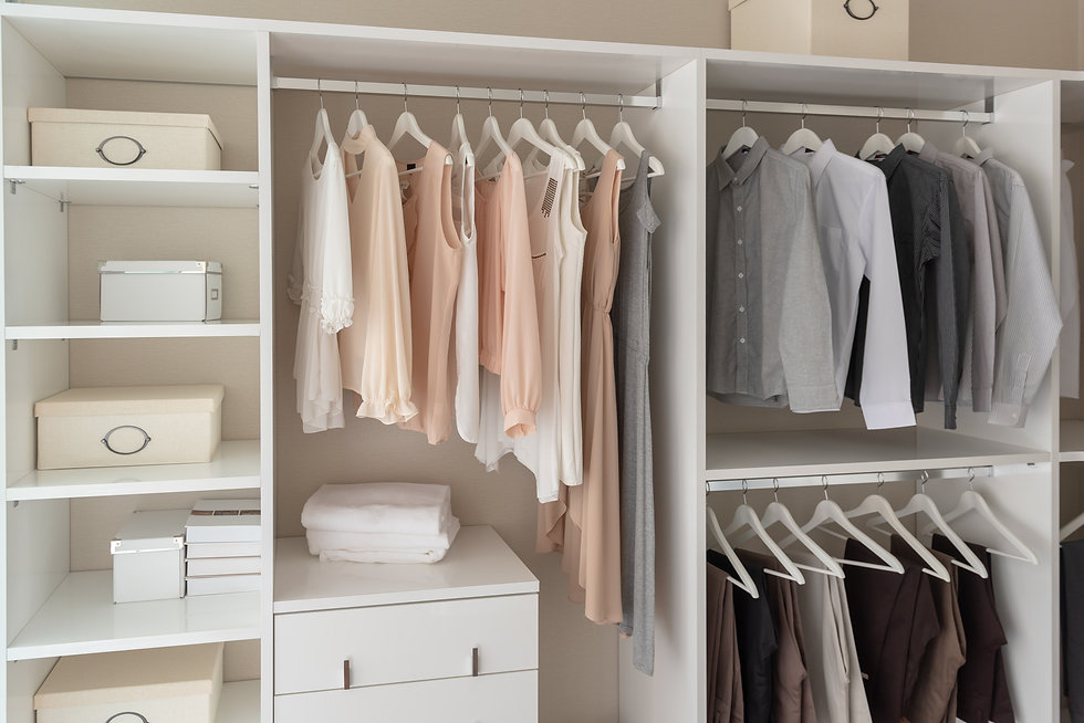 modern closet with clothes hanging on ra