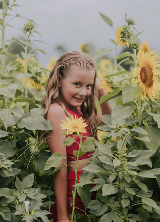 msp - sunflowers-30.jpg