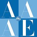 AAAE_Logo_WEB.jpg