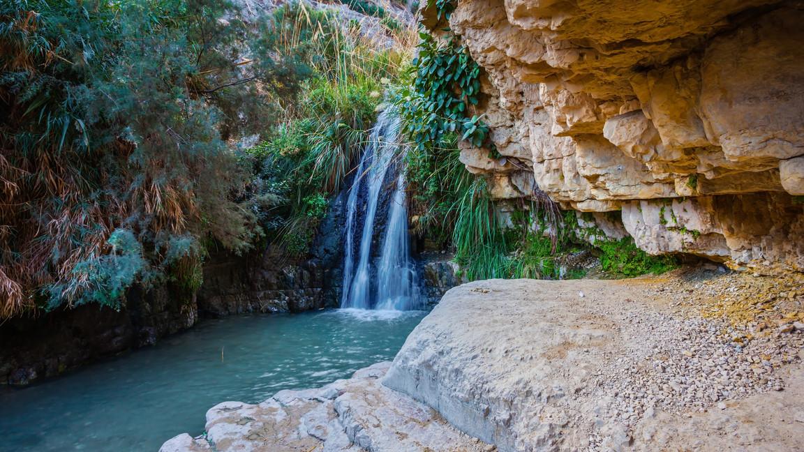 The national park Ein Gedi, Israel. Beau