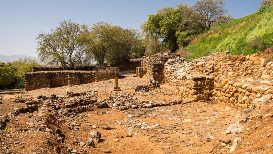 The Israelite Gate in Tel Dan Nature Res