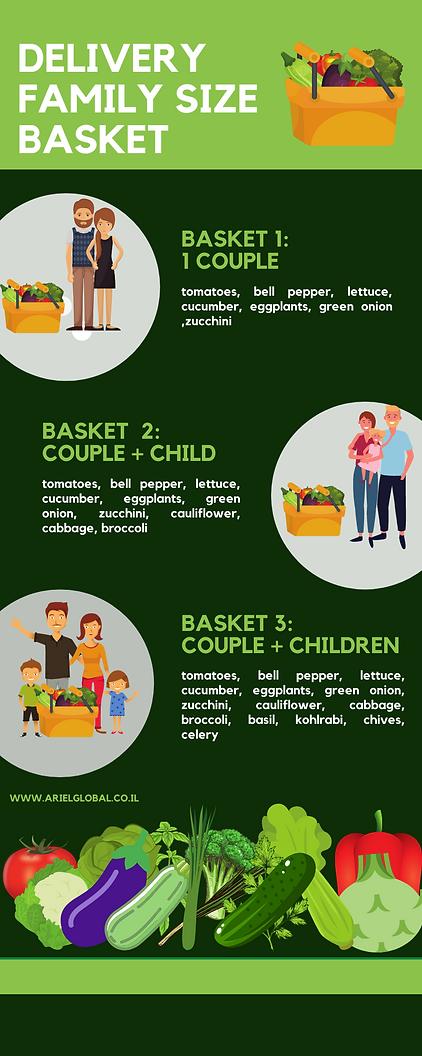 ariel basket  (1).png