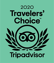 TRAVELLERS CHOICE PREMIO.png