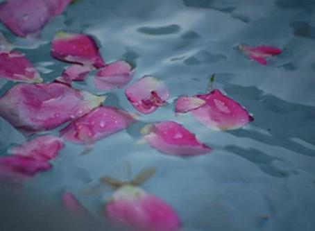 Bath fit for Venus
