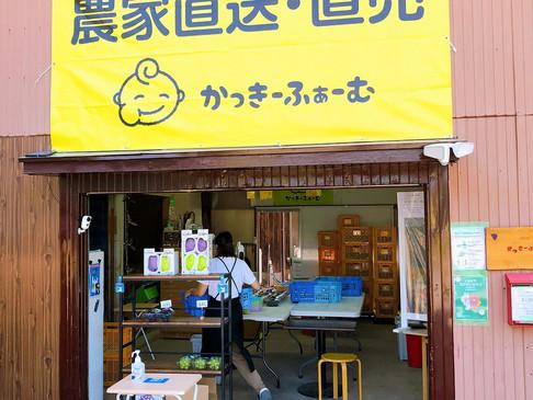 かっきーふぁーむさん ぶどう直売所