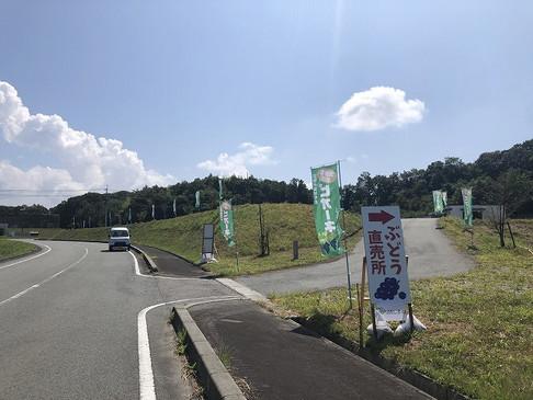JAのぶどう直売所開設☆☆☆