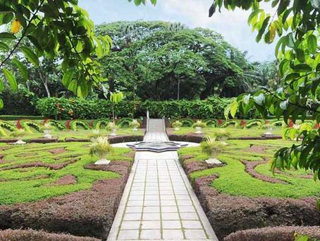 Botanical Garden 101