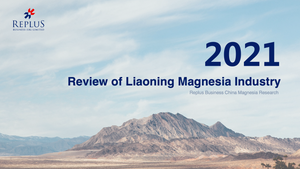 2021 Review of Liaoning Magnesia Industry