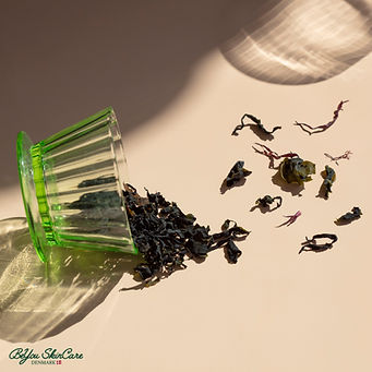 USED_Seaweed-for-Skin-4794-1x1-hires-ec18671c73fe445bad07a718eaeb8876.jpeg