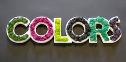 img-multicolors-1