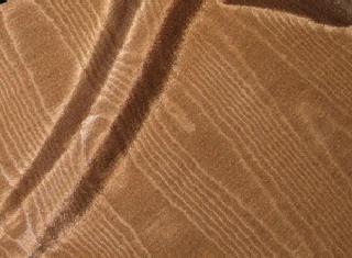Bengaline - Brown