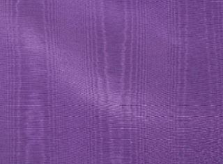 Bengaline - Purple