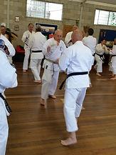 IKGA Sydney Seminar 2015 - Wix4.jpg