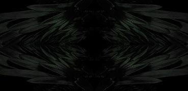 Plashka6.jpg