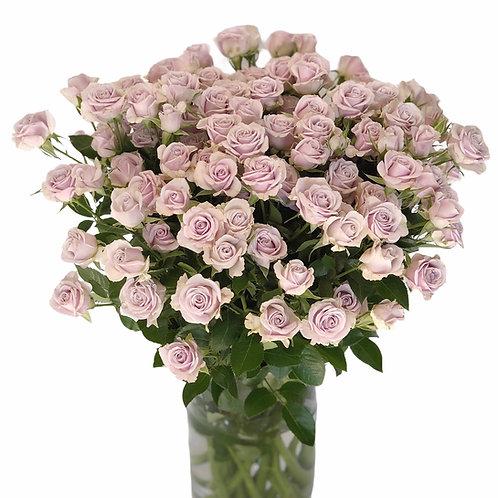Smulkiažiedės rožės - 70 cm (rusvos)
