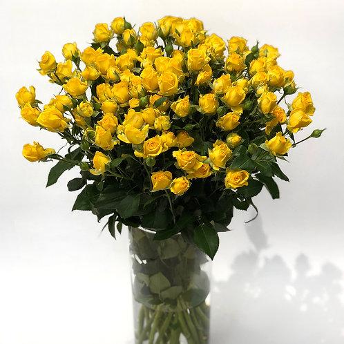 Smulkiažiedės rožės - 70 cm (geltonos)