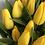 Thumbnail: Tulpės (geltonos)