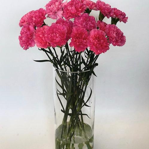 Gvazdikai (rožiniai)