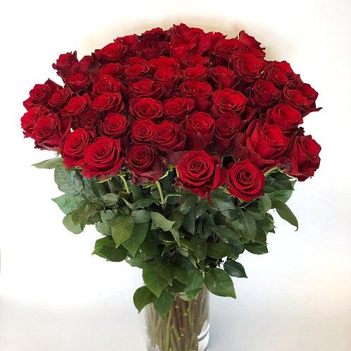 Rožės - 60cm (raudonos)