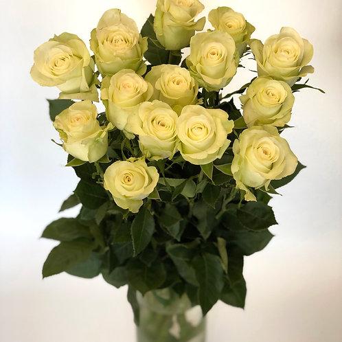 Rožės - 80cm (baltos)