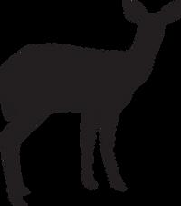 Deer Pavilion.png