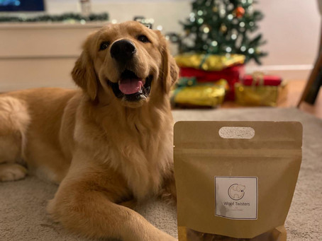 The Best Treats to Gift Your Pooch in Hong Kong This Christmas