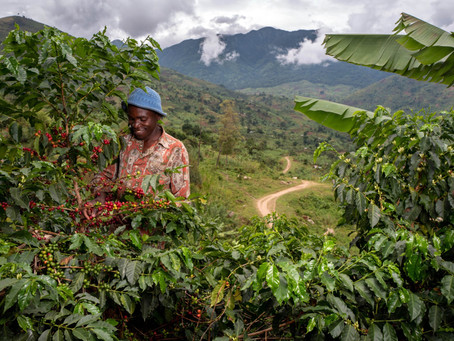 Brand Feature: Sustainability at Nespresso