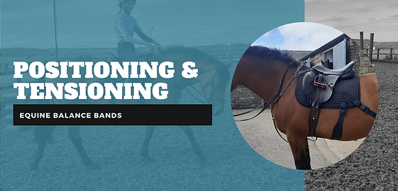 How to fit equine balance bands equiband