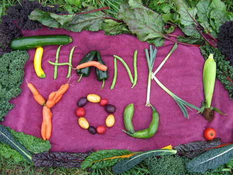 Thank you to all who support us each Sunday during The Northmont Community Market Season!