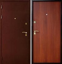 Alt-металлическая дверь в свой дом