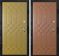 Alt-стальная дверь в дом