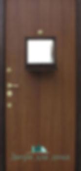 Alt-дверь в кассу стальная