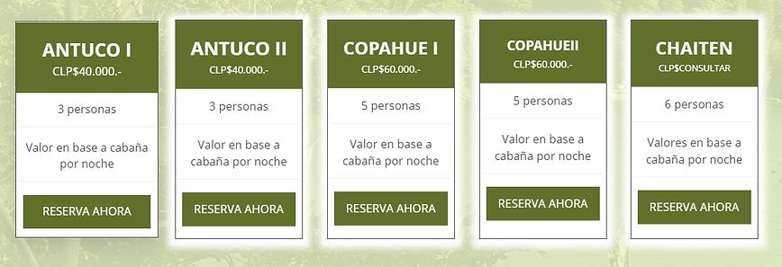 TABLA1.png