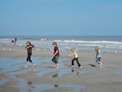 Amelia Islnd Beach Walk