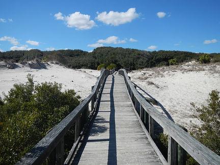 Cumberland Island Beaches