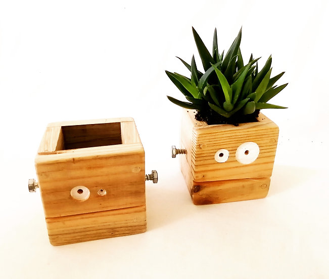 Zombie Planter box / Desk Tidier
