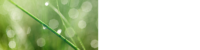 green star environment benefits