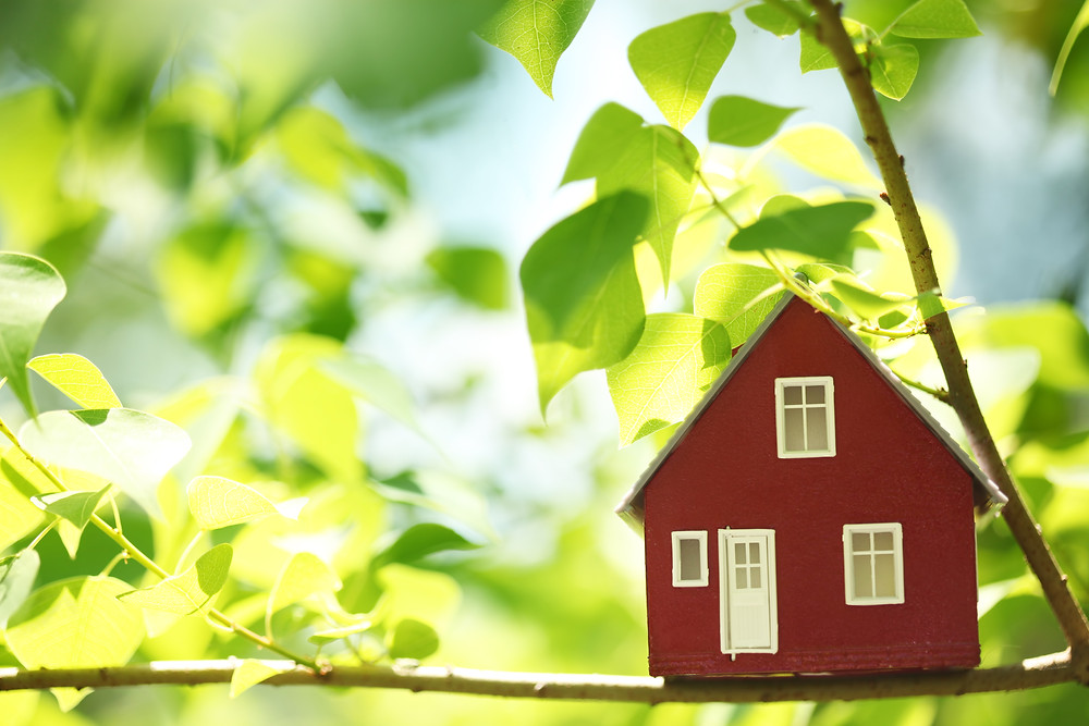 home buying green star