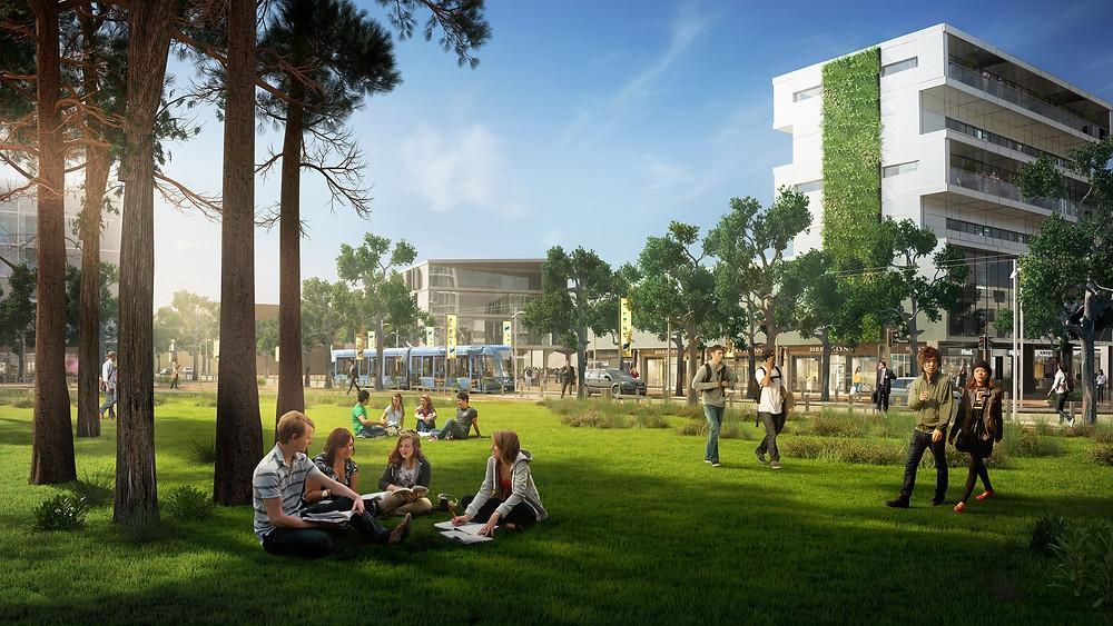 Curtin University green star community