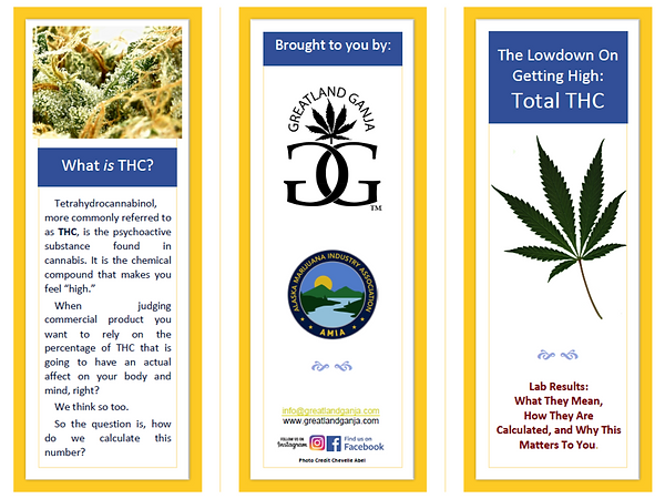 THC pamphlet 1.png