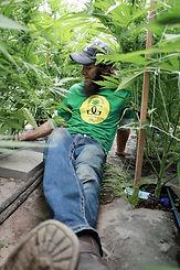 Living Soil Mika Day.jpg