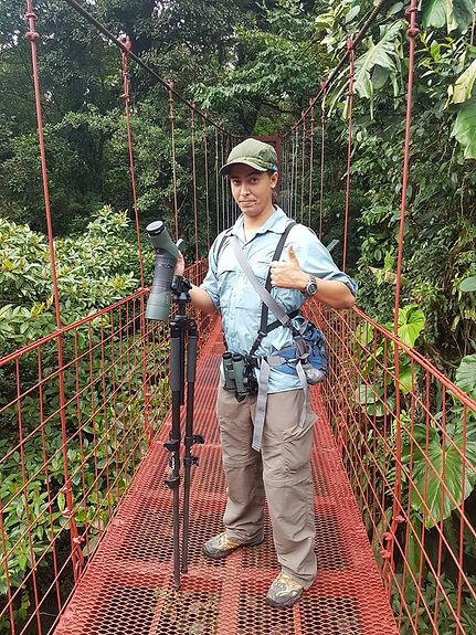 Best tours in Monteverde region