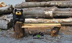 SIngle bear bench front