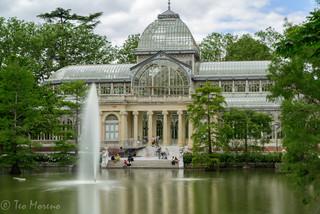 Palacio de Cristal. Foto Teo Moreno